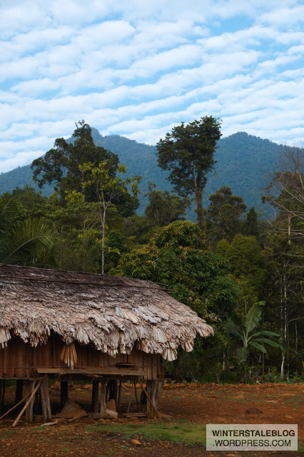 This area has both Vano and Dubre people living there, both of whose houses are rectangular rather than circular as with the Lani.