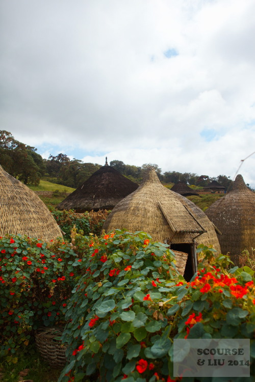 The Harenna Cultural Lodge in Rira has some small huts for tourists.